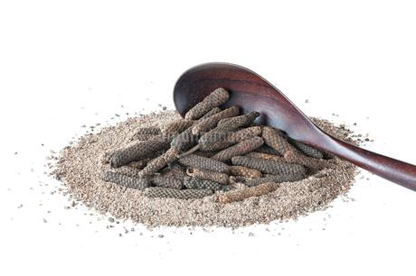 ホールタイプと粉末タイプのピパーチ(ヒハツ、島胡椒)の写真素材 [FYI03402080]