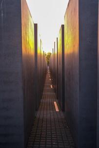 ベルリンの夕焼けの写真素材 [FYI03402265]