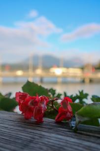 スイス、ルツェルン、橋からの風景の写真素材 [FYI03402270]
