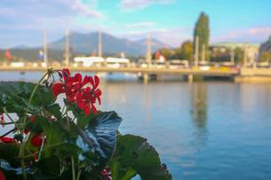 スイス、ルツェルン、橋からの風景の写真素材 [FYI03402272]