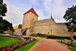 世界遺産歴史地区のタリンの旧市街にあるデンマーク王の庭・旧市街は世界遺産の写真素材 [FYI03402433]