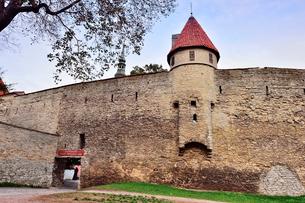 世界遺産歴史地区のタリンの旧市街にあるデンマーク王の庭・旧市街は世界遺産の写真素材 [FYI03402438]
