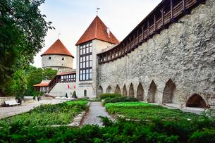 世界遺産歴史地区のタリンの旧市街にあるデンマーク王の庭・旧市街は世界遺産の写真素材 [FYI03402451]