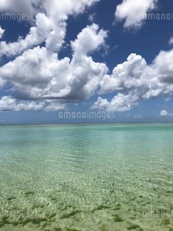おだやかなグアムの海の写真素材 [FYI03402464]