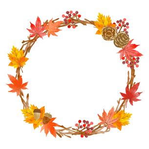 秋の植物 フレーム 水彩風 のイラスト素材 [FYI03402951]