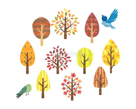 水彩風 ことりと木のイラストのイラスト素材 [FYI03402955]