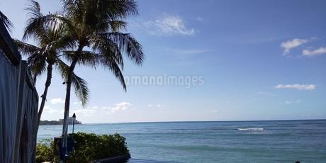 ハワイワイキキプールの写真素材 [FYI03403111]