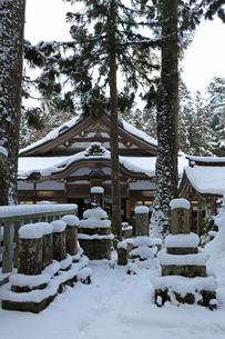 冬の高野山参道の写真素材 [FYI03403244]