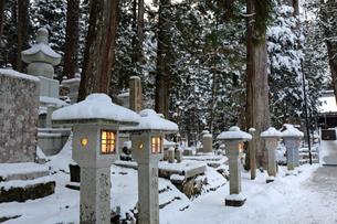 冬の高野山参道の写真素材 [FYI03403246]