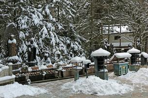 冬の高野山参道の写真素材 [FYI03403247]