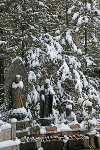 冬の高野山参道の写真素材 [FYI03403249]