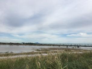 台風で増水した利根川にススキの写真素材 [FYI03403357]