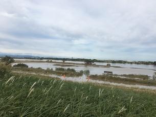 台風で増水した利根川の写真素材 [FYI03403359]