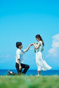 ウェディング カップル プロポーズの写真素材 [FYI03403824]