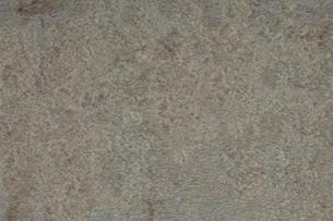石盤の写真素材 [FYI03404006]