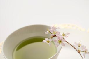 抹茶とサクラの花の写真素材 [FYI03404060]