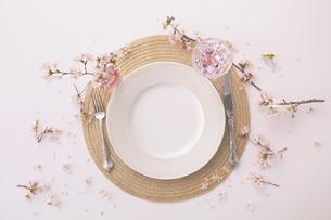 サクラの花があしらわれたテーブルセッティングの写真素材 [FYI03404068]