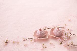 二つのサクラのおはぎとサクラの花の写真素材 [FYI03404073]