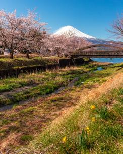 河口湖 日本 山梨県 富士河口湖町の写真素材 [FYI03404104]
