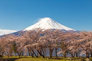河口湖 日本 山梨県 富士河口湖町の写真素材 [FYI03404105]