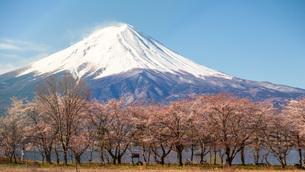 河口湖 日本 山梨県 富士河口湖町の写真素材 [FYI03404106]