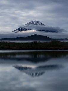 精進湖と富士山の写真素材 [FYI03404114]