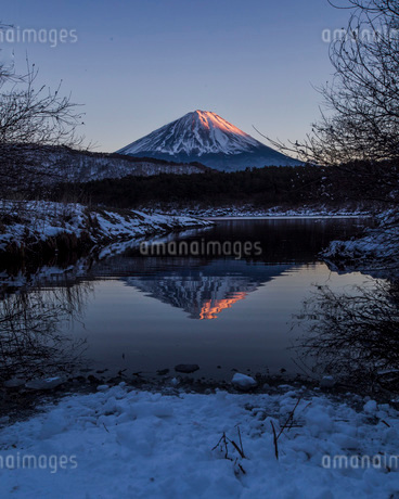 西湖 (富士五湖) 日本 山梨県 富士河口湖町の写真素材 [FYI03404123]
