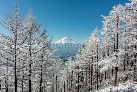 雪積る峠と富士山 日本 山梨県 笛吹市の写真素材 [FYI03404126]