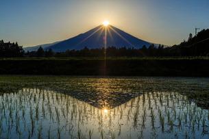 ダイヤモンド富士 日本 静岡県 御殿場市の写真素材 [FYI03404138]