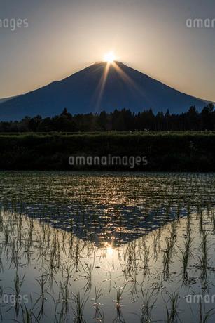 ダイヤモンド富士 日本 静岡県 御殿場市の写真素材 [FYI03404140]