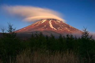 紅富士 日本 山梨県 鳴沢村の写真素材 [FYI03404144]