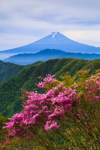 白谷ノ丸から望む富士山 日本 山梨県 大月市の写真素材 [FYI03404149]