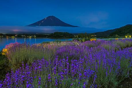 大石公園と富士山 日本 山梨県 富士河口湖町の写真素材 [FYI03404165]