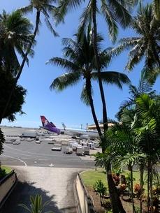 ハワイの写真素材 [FYI03404683]