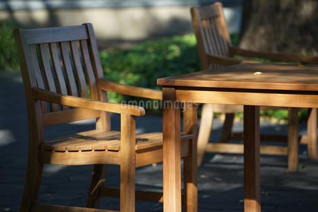 陽の照らす庭のテーブルと椅子の写真素材 [FYI03405156]