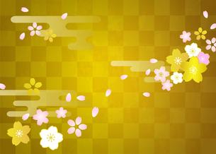 桜と市松模様の背景素材のイラスト素材 [FYI03405512]
