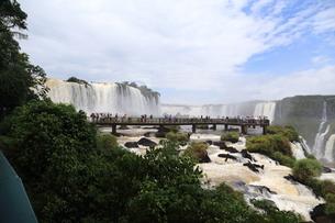 イグアスの滝の写真素材 [FYI03405671]