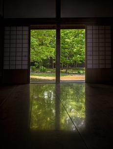 閑院宮邸跡の室内から見た庭園の写真素材 [FYI03405752]