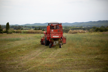 農作業をする赤色のトラクターの後ろ姿の写真素材 [FYI03405837]