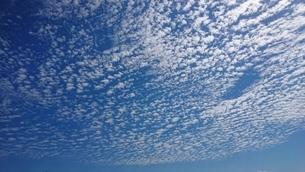 空の写真素材 [FYI03405927]