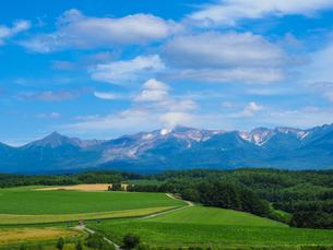 夏の十勝岳の写真素材 [FYI03406045]