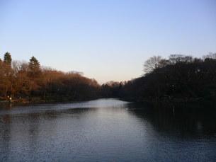 壮大な池の写真素材 [FYI03406088]