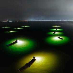 シラスウナギ漁 吉野川大橋 日本 徳島県 徳島市の写真素材 [FYI03406277]