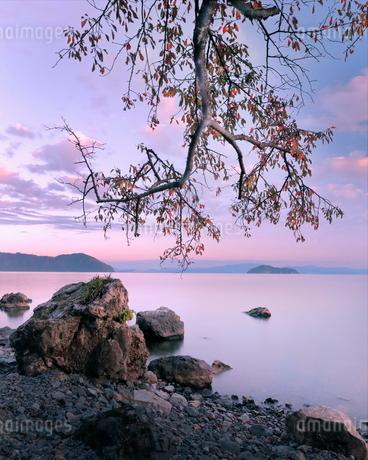 秋の夕景 海津大崎 の写真素材 [FYI03406298]