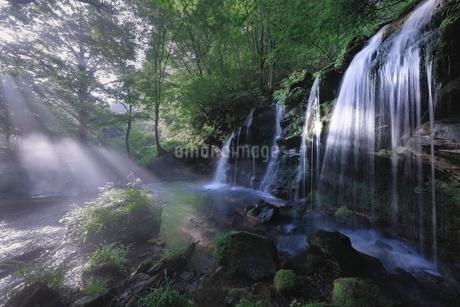 猿壷の滝 日本 兵庫県 新温泉町の写真素材 [FYI03406311]