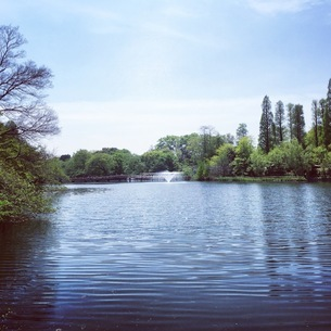 噴水と公園の写真素材 [FYI03406579]