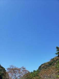 雲ひとつない空の写真素材 [FYI03406598]
