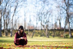 落ち葉を拾う女性の写真素材 [FYI03406662]