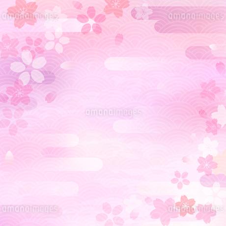 桜と雲の和風背景のイラスト素材 [FYI03406749]