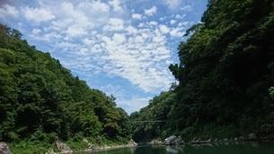 川辺の景色の写真素材 [FYI03406847]